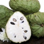 anona-custard apple-sugar apple